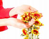 hands and flowers isolated on white