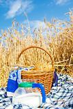 Bread and milk in a wheat field