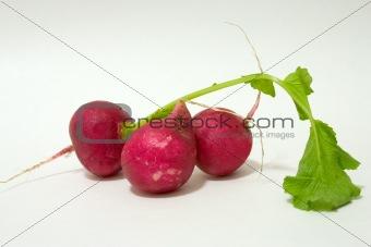 Three Radish's