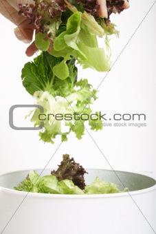 Tossed lettuce