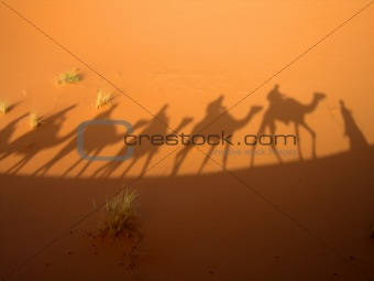 Shadow of caravan