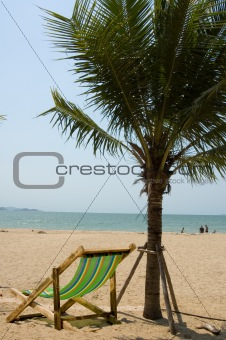 Chair and Palm Tree at Beach