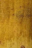 rust colored silk