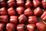 Sweet sweet red peppers