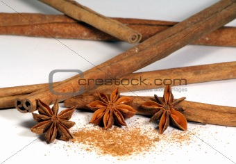 Cinnamon sticks with annis flowers