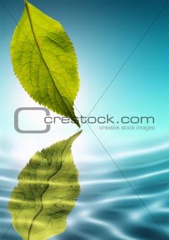 Fresh Green Nature