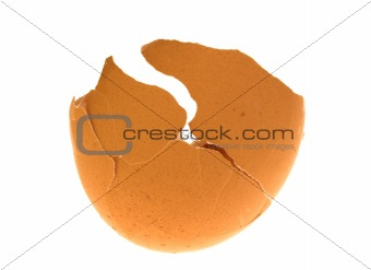 cracked  egg shell