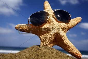 Beach Starfish with Shades