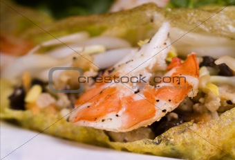 Close up of a cooked prawn