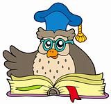 Cartoon owl teacher with book