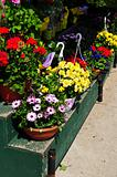 Flower baskets for sale