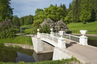 Beautiful bridge in the park