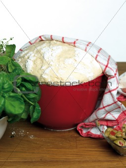 Bread dough rising in plastic bowl