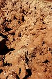 Agriculture field red clay soil texture