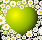 Green heart made from flowers