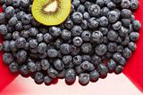 Macro Kiwi and Blueberries Background on Red Dish with Copy Space.