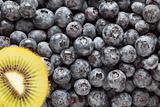 Macro Kiwi and Blueberries Background with Copy Space.