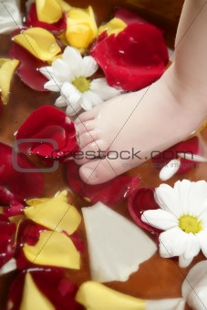 Aromatherapy, flowers feet bath, rose petal