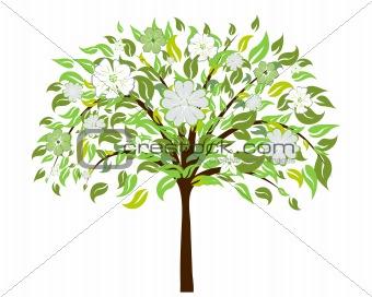 blossom tree