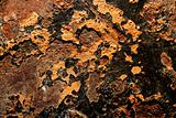 Rusty steel texture, rusted metal surfaces