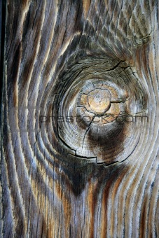 Aged old wood texture, ancient wooden door