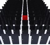 perspective doors