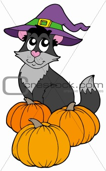 Cat with hat and pumpkins