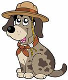Friendly dog in scout hat