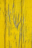old natural pine wood fence yellow