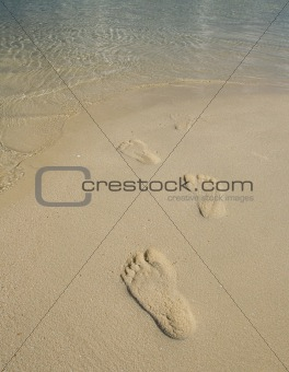 Tourist foot print on beach during vacation at exotic tropical resort of Kapalai island