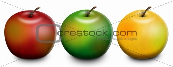 3 Apples Raster Illustration