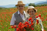 Senior couple on the poppy field enjoying summer