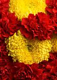 Carnations and chrysanthemums