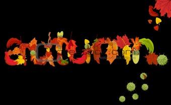 Autumn, vector