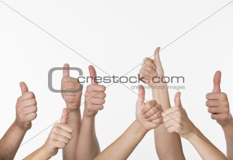 A group of people are giving thumbs-up signs
