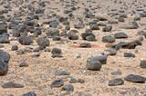 Black Volcanic Stones at Canary Island Fuerteventura, Spain