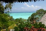 Resort in Zanzibar