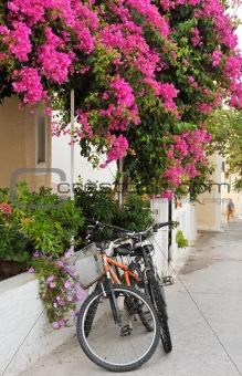Greek island village alley