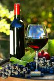 Glass of red wine with bottle and grapes