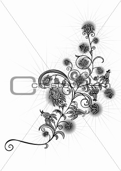 Abstract black and white floral ornament