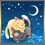 Baby cats in the night