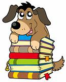 Cute dog on pile of books