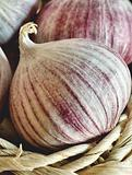 Single clove garlic in a basket