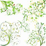 Floral vector background set