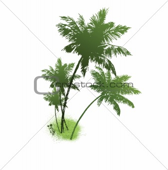 four palms of green color. Vector illustration