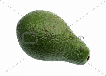 Single green avocado.