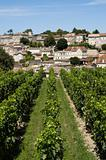 saint emilion vineyard