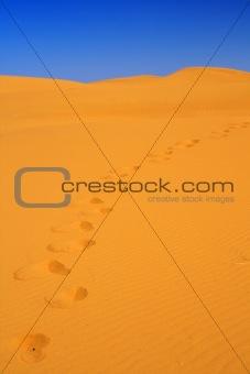 footsteps on sand dunes