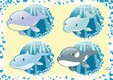 Ocean Family fish