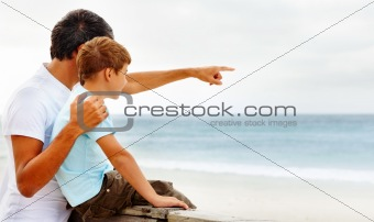 Father pointing towards the sea, showing something to his son